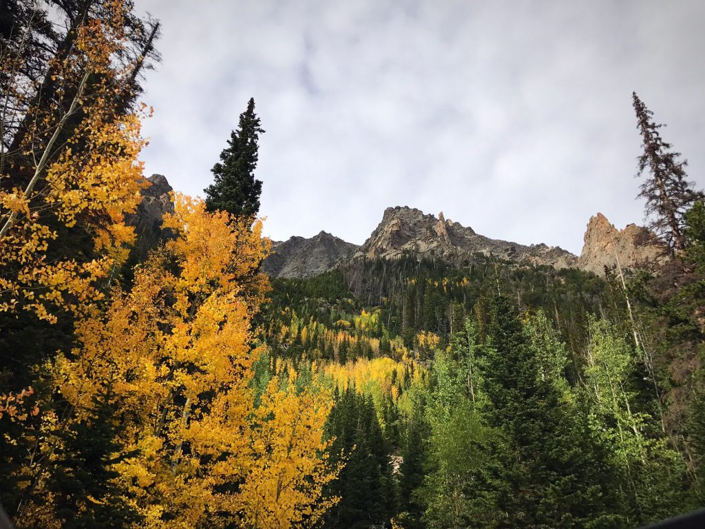 12 Best Places to See Autumn Leaves in Canada - Alberta's Rocky Mountain